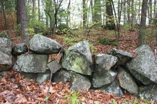 Generic stone wall as a result of forest conversion