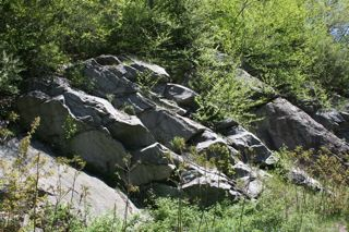 Outcropping of rocks