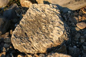 Permian Purgatory Puddingstone